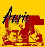 AURIS_CDfront